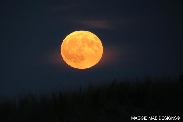 moon-harvest-sept2016-13-blog